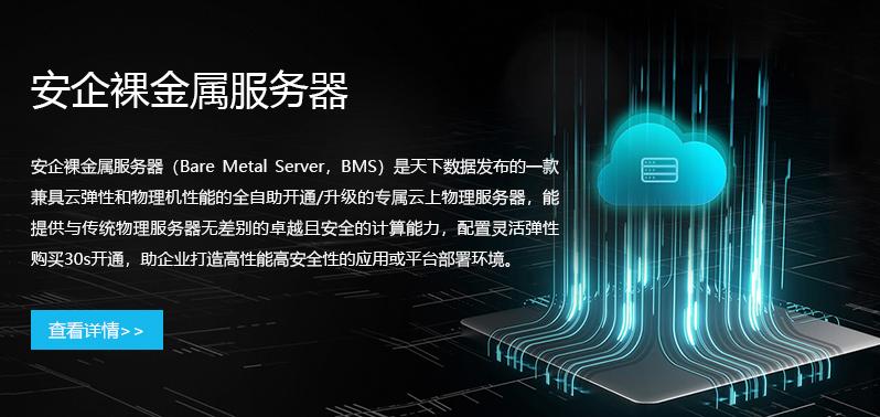 裸金属服务器